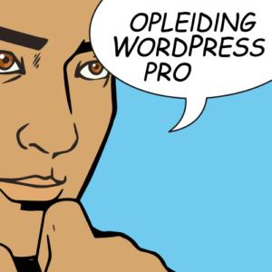 Opleiding WordPress pro bij Gmi designschool