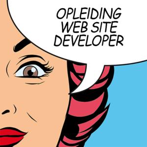 gmi-designschool-web-site-developer
